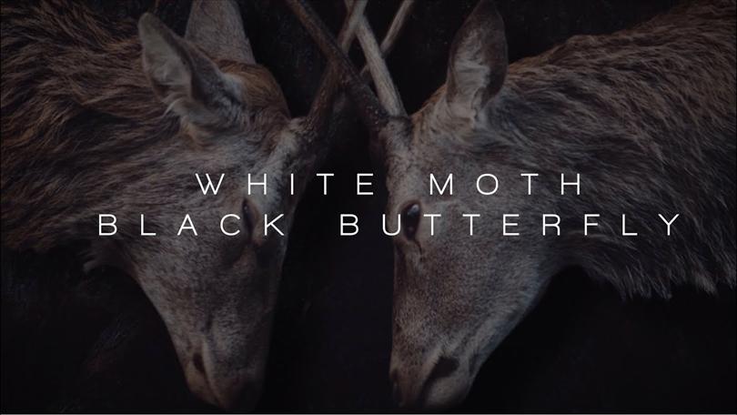 White Moth Black Butterfly – första videon från kommande plattan ute.