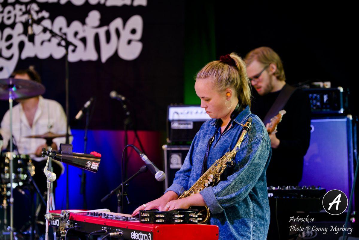 Pymlico – Slottsskogen Goes Progressive 19/8-2017