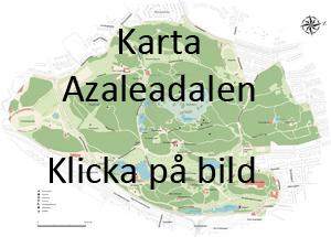 azaleadalen göteborg karta Slottsskogen Goes Progressive 2013 azaleadalen göteborg karta