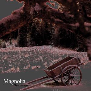 Magnolia - Svarta Sagor