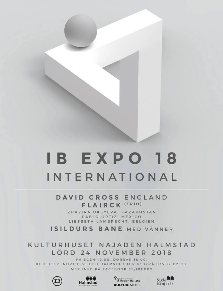 David Cross (King Crimson) till IB Expo 2018.